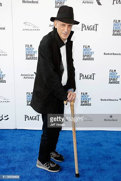 Cinematographer Edward Lachman attends the 2016 Film Independent Spirit Awards on February 27 2016 in Santa Monica California