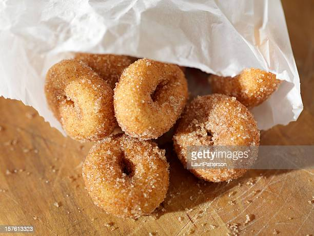 Cinnamon and Sugar Mini Donuts