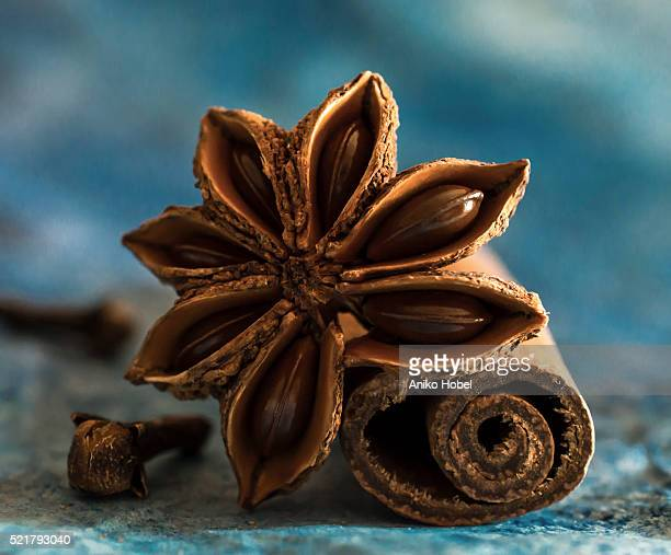 cinnamon,anise and clove - aniko hobel stock pictures, royalty-free photos & images
