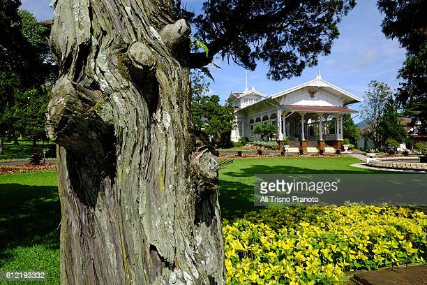 cipanas palace or presidential palace in cipanas. west java. - bogor stock pictures, royalty-free photos & images