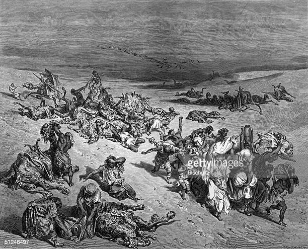 Circa 1475 BC Animals suffering pestilence during the series of ten plagues in Egypt Original Artwork Engraving after illustration by Gustave Dore