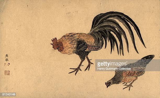 Circa 1750 A cockerel and chicken Original Artist By Okyo