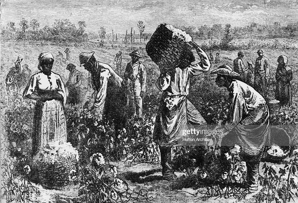 Cotton Slaves : News Photo