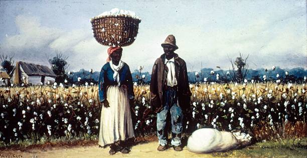Cotton Pickers Wall Art