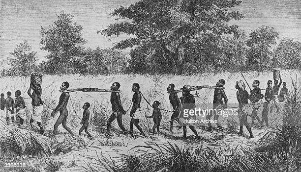 Walking through the bush children and adults in a slave chain gang shackled by their necks and hands An overseer with a gun walks beside them...
