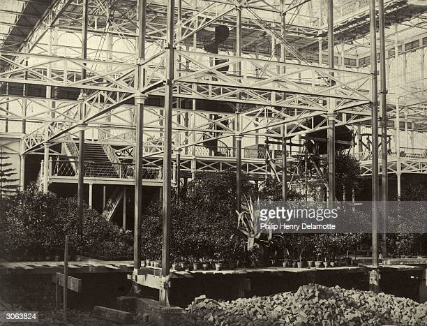 The first consignment of plants arrives at the Crystal Palace, currently under reconstruction at Sydenham Hill, South London.