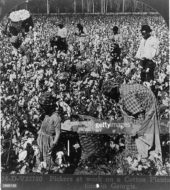 Pickers at work on a cotton plantation Georgia