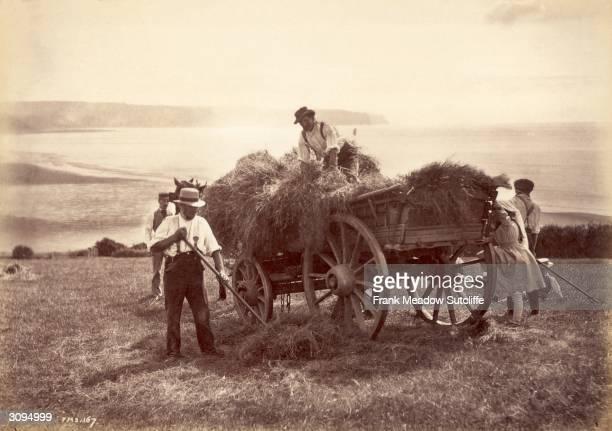 Farm hands pitch hay into a cart on a farm near Whitby