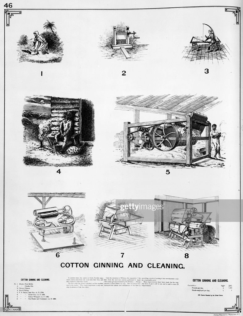 Cotton Production : News Photo