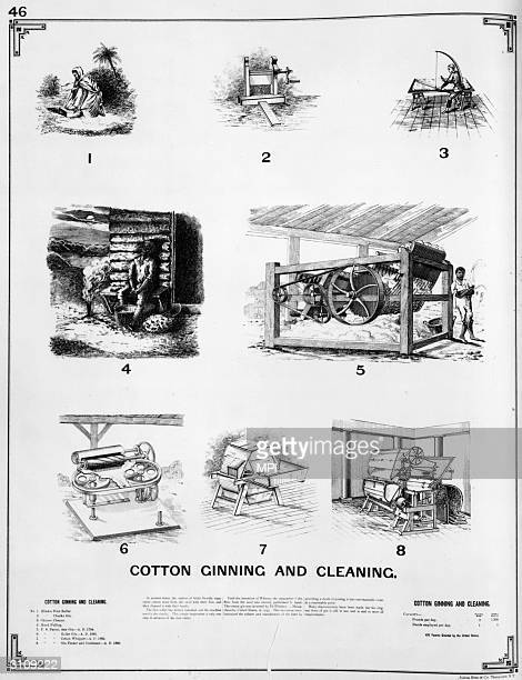 Eli Whitney invented the cotton gin in 1793 It pulls the cotton through a set of teeth which catch and separates the seeds