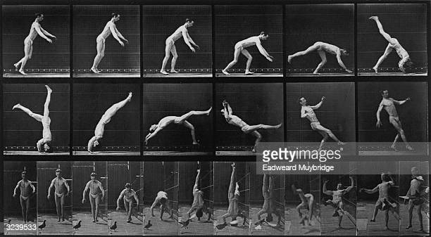 'HeadSpring' a side view and front view stopaction series of photographs of a man performing a headspring by Eadweard Muybridge Original Publication...