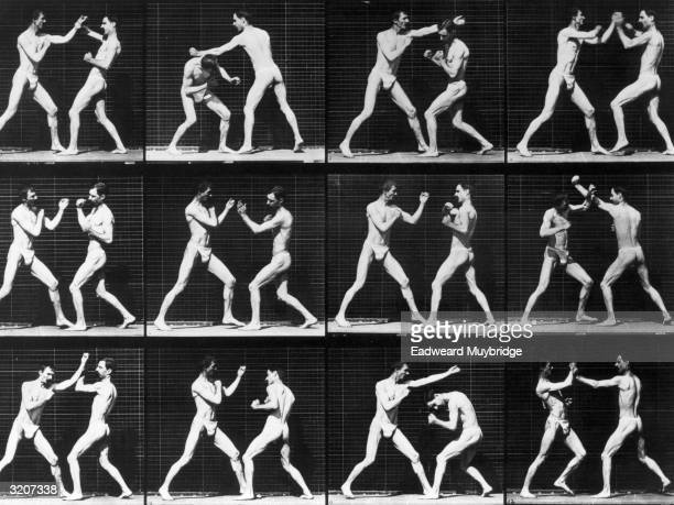 Twelve fulllength images of two men clad in jock straps sparring outdoors in front of a grid backdrop Photograph entitled 'Open Hand Boxing' by...