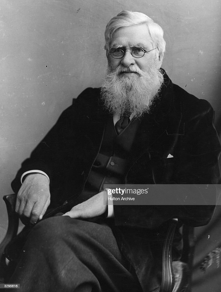 Alfred Wallace : News Photo