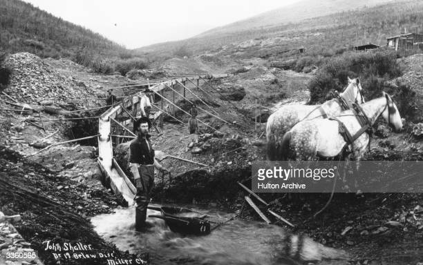 Gold prospectors panning for alluvial gold below Disc' Miller Creek in the Klondike a region in the western region of the Yukon Territory Powlesland...
