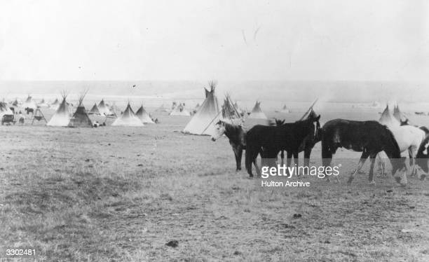 An American native camp on the Blackfoot Reserve with several teepees in the background