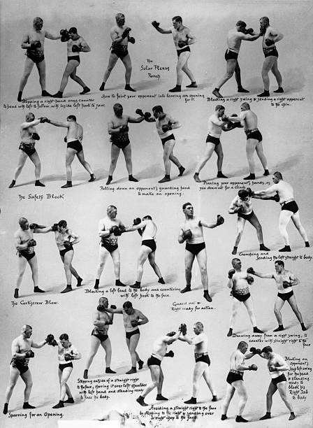 Boxing Moves