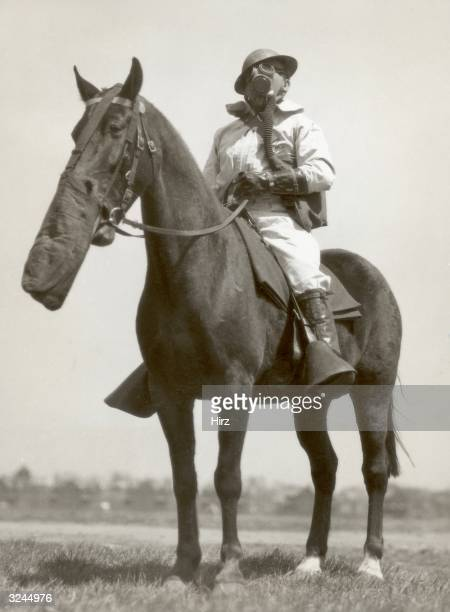 Portrait of Sergeant Joseph Levin of the Chemical Warfare Service wearing a gas mask and sitting astride his horse Buddy Governors Island New York...