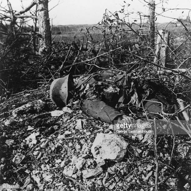 The remains of a German soldier lie decomposing in a field during World War I