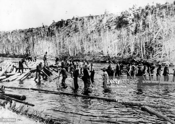 Loggers working in a river in New Brunswick in Canada