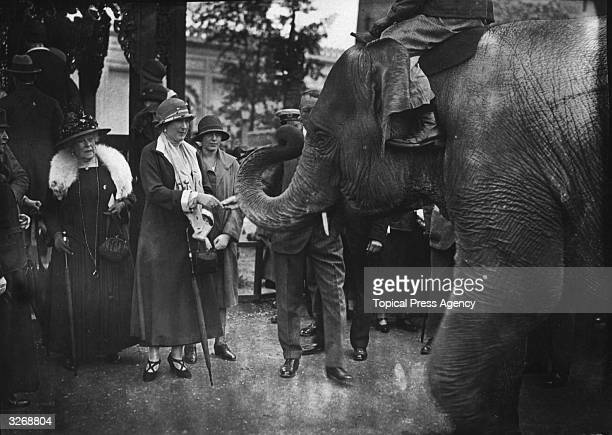Queen Ena of Spain on a visit to Wembley stops to feed an elephant