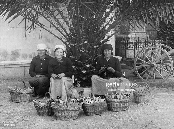 Women selling fruit and nuts from baskets in a street in Korcola Yugoslavia