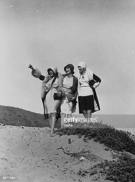 A group of flappers on a beach