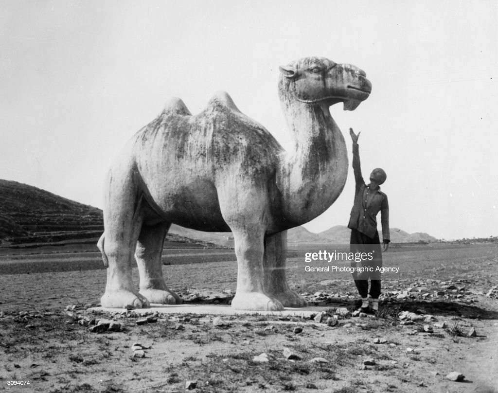 A man stretches to reach the head of large carved camel