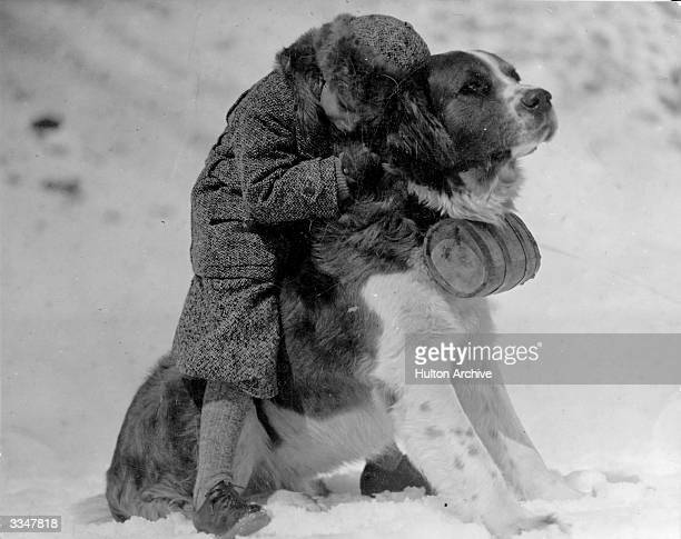 A small child hugging a large St Bernard dog in the snow