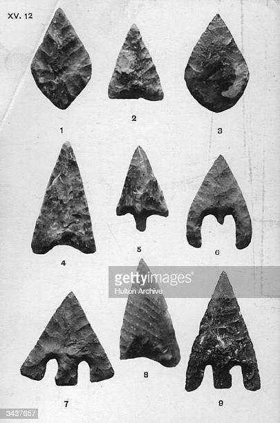 Flint arrow heads from the neolithic age which were found in Britain