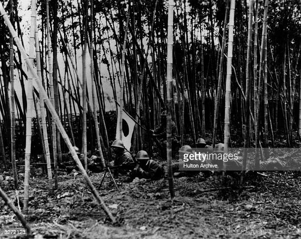 Japanese troops in a bamboo forest somewhere in Manchuria, during the Sino-Japanese conflict.