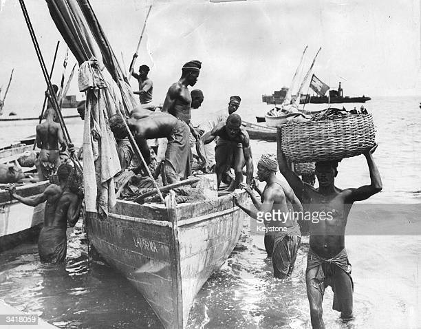 Produce being brought ashore from small boats at Freetown Sierra Leone