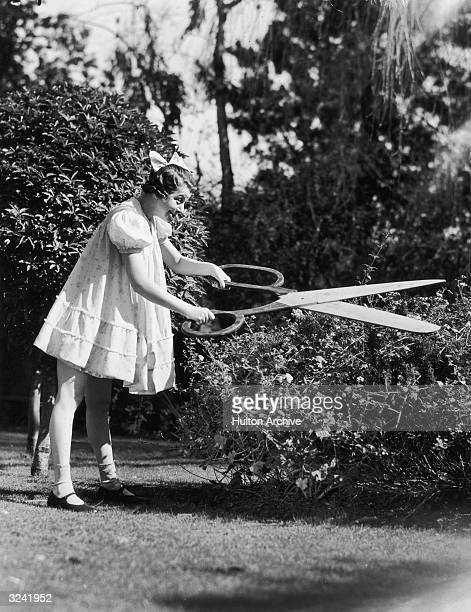 American actor and singer Fanny Brice as 'Baby Snooks' trimming a rosebush with large pair of scissors