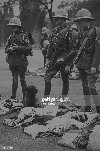 Three Scots Grey troops being inspected at Hounslow Barracks before leaving for Palestine A trooper's dog took up his stance on the parade ground and...