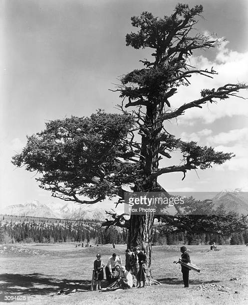 A group of golfers under an Old Douglas Fir on the 15th Green of Banff Springs golf course