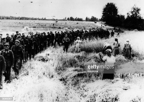 A woman shakes her fist at a line of German prisoners as they march through a field in Russia during World War II