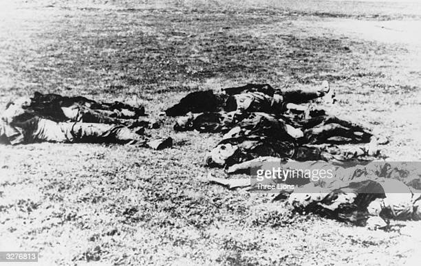 Yugoslav partisans executed by the Nazis.
