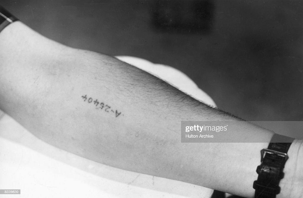 Mark of Auschwitz : News Photo