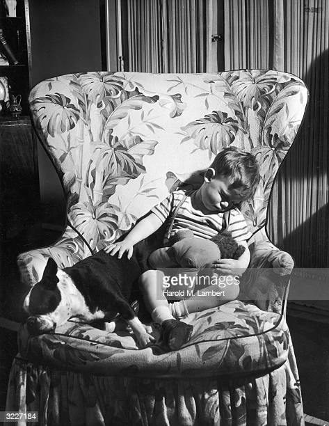 Fulllength image of a young boy sitting asleep in a large armchair with a teddybear on his lap and his hand resting on his dog beside him