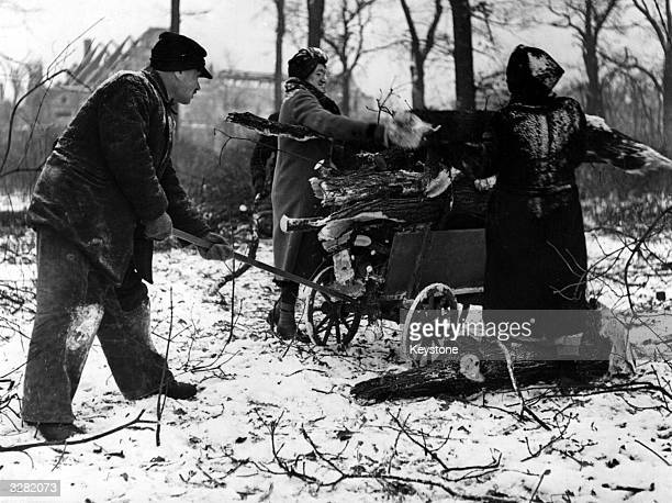 Men and women collect logs from felled trees in the Tiergarten in Berlin for fuel during the winter following defeat in World War II and in...
