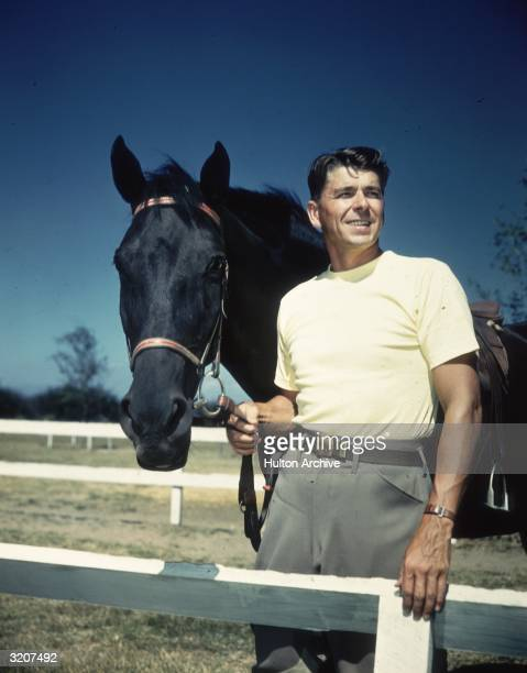 Portrait of American actor Ronald Reagan in a yellow tshirt standing next to a black horse holding its reins