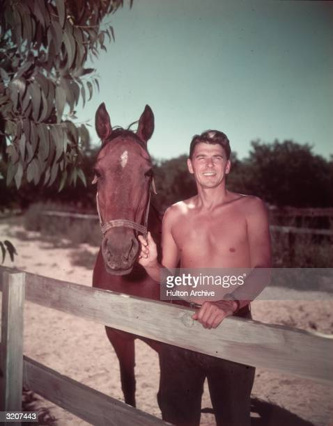Portrait of American actor Ronald Reagan standing bare chested next to a fence with a horse