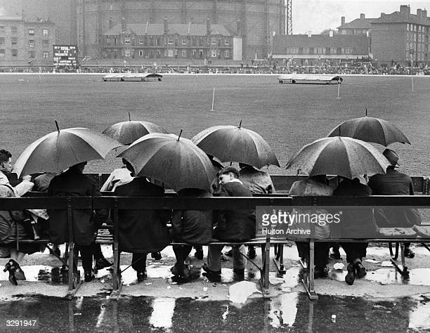 Group of spectators sit underneath umbrellas in the rain, waiting for a cricket match to resume play at the Oval, London.