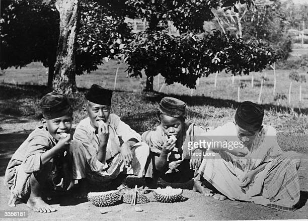 A group of Malaysian boys eating a durian fruit The spiny skin contains a creamy pulp which has a fetid smell but an agreeable taste