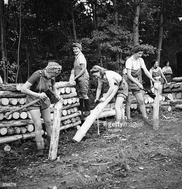 A group of young women working in the lumber industry fell and strip young trees