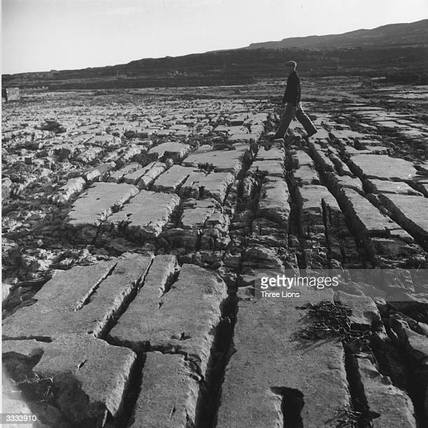 A man walking over rocky terrain in the Aran Islands County Galway Hardy grasses and small plants grow in the crevices between the rocks and the...