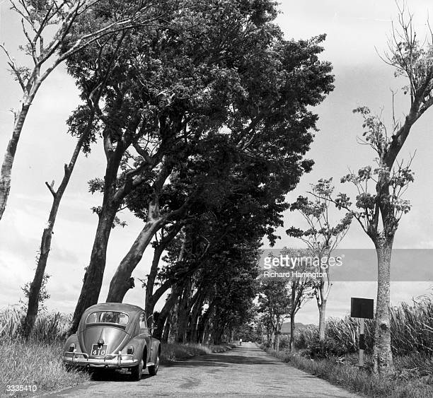 A Volkswagen Beetle parked at the side of a narrow road on the island of Madagascar