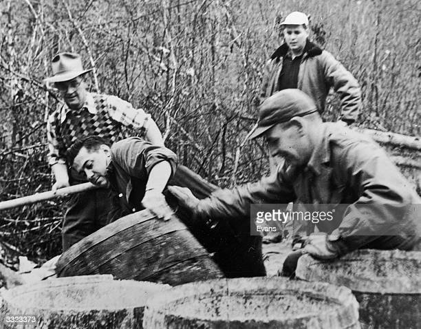 Barrels of illegal moonshine liquor being destroyed by American Revenue agents.
