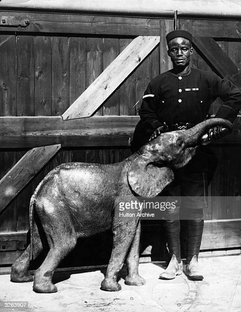 New arrivals at London Zoo a baby African elephant in the care of a policeman both from Sierra Leone