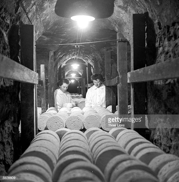 Two women inspect rows of ripening Roquefort cheeses in a cave under the French town of Roquefort