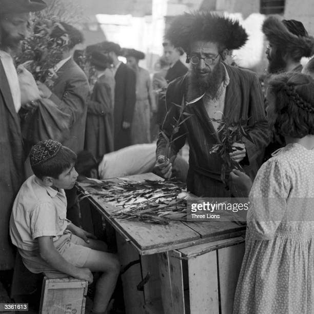 A devout member of the ultraorthodox Mea Shearim Jewish community in Jerusalem preparing for the Feast of Succoth